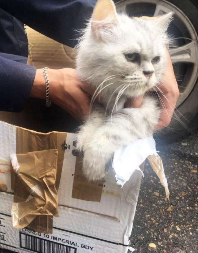 У Казані евакуювали житловий будинок за підозрілої коробки (4 фото)