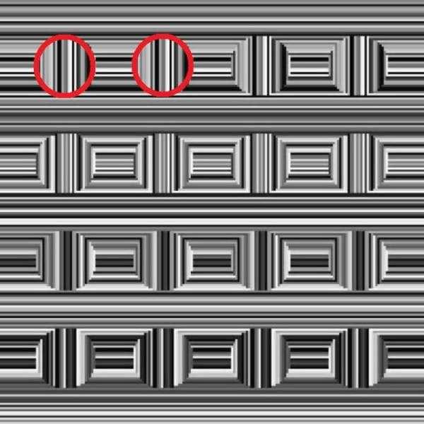 Оптична ілюзія: скільки кіл на цій картинці?