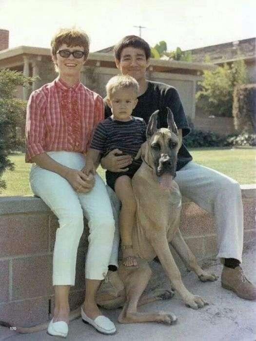 Фотографії з сімейного альбому Брюса Лі (32 фото)