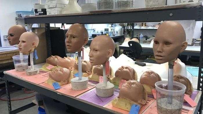 Як виготовляють сучасні секс-ляльки (33 фото)