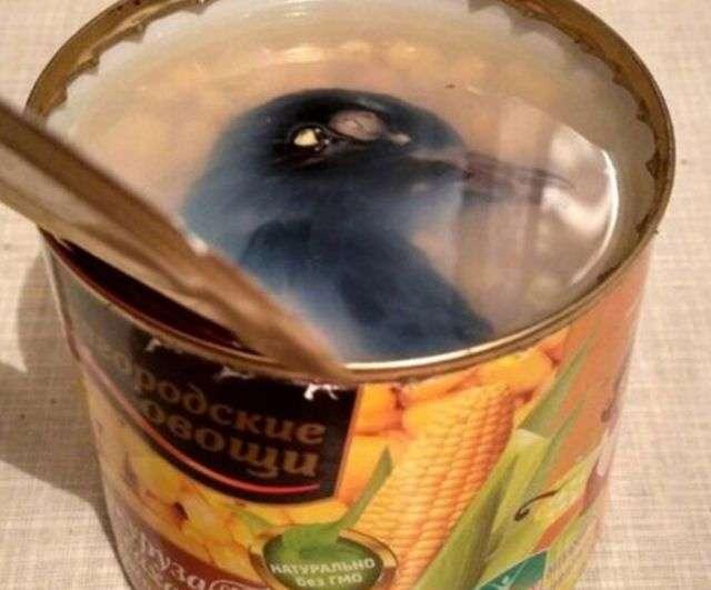 Несподівана знахідка в консервованої кукурудзи (2 фото)