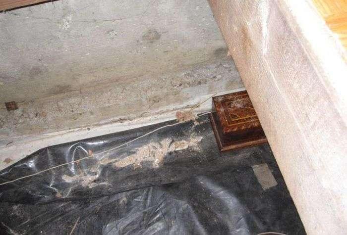 Скарб в комірчині старого будинку (25 фото)