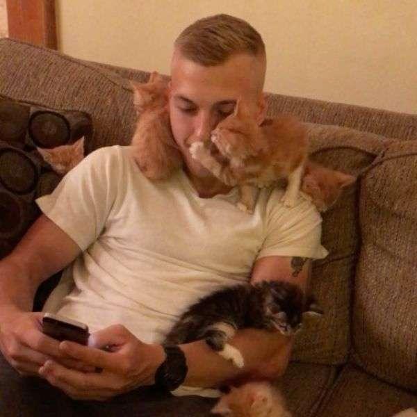 10 маленьких кошенят і хлопець (5 фото)