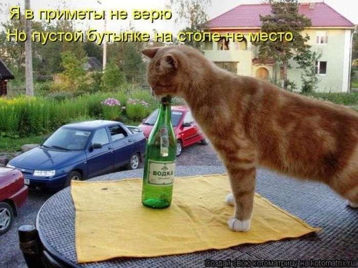 Цікаві факти про алкоголь і на околоалкогольную тему (8 фото)