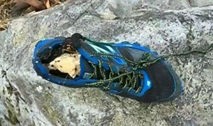 На пляжі Ванкувера виявили взуту в кросівок людську ступню (3 фото)