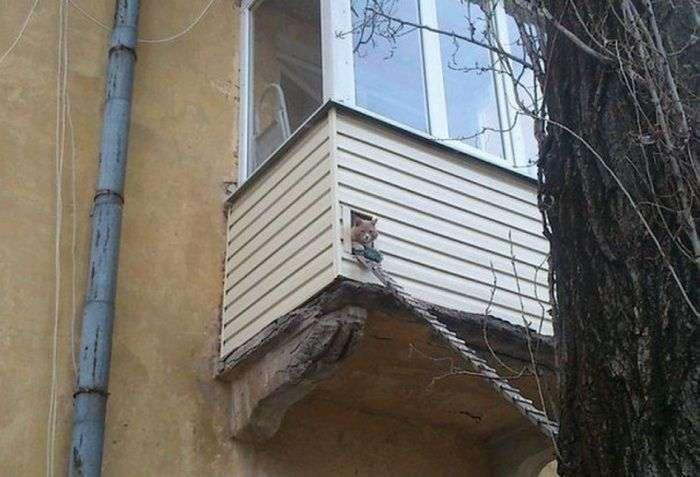 Дивні і смішні фото з російських просторів (42 фото)