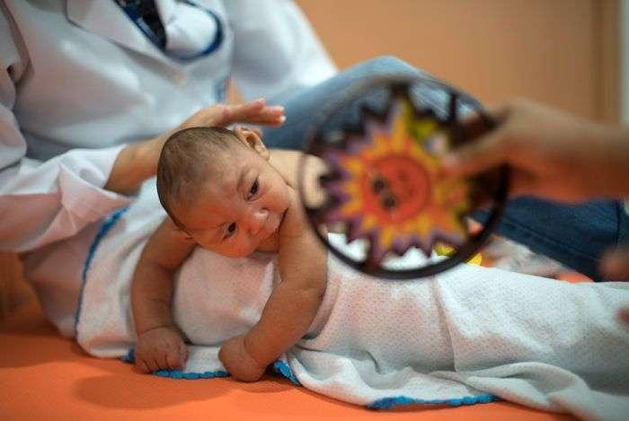 Лихоманка Зіку - хвороба нетрів (13 фото)