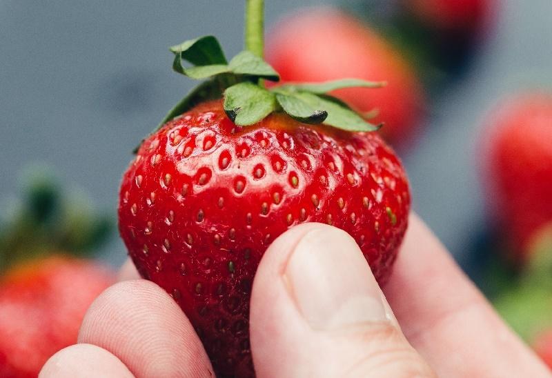 Кому нельзя есть клубнику без рубрики, аллергия, безопасность, вред, клубника, питание