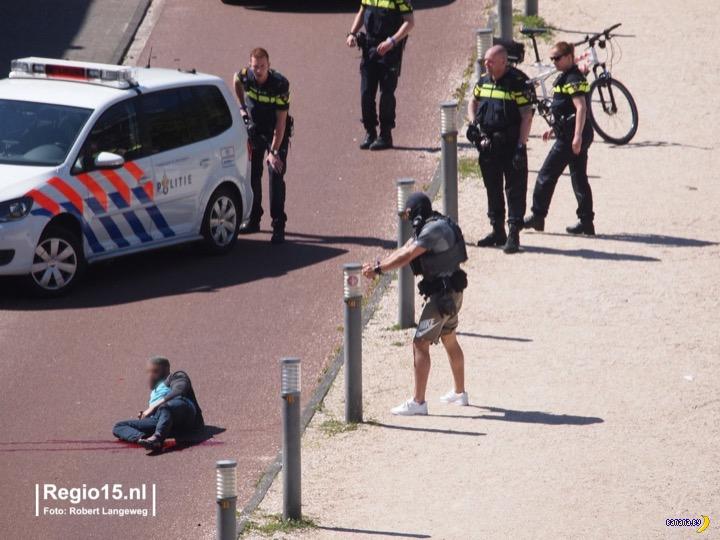 Полицейский спецназ в шортах и кедах Интересное