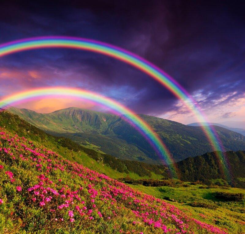 Чудеса природы: почему радуга имеет форму дуги? Интересное