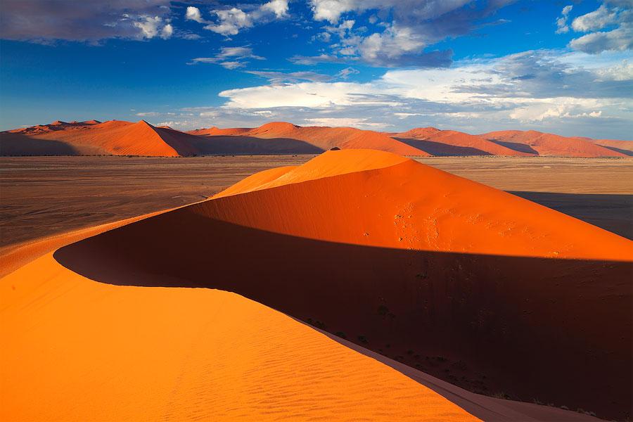 Пустыня - красивейшая часть нашей планеты, таящая множество загадок природа
