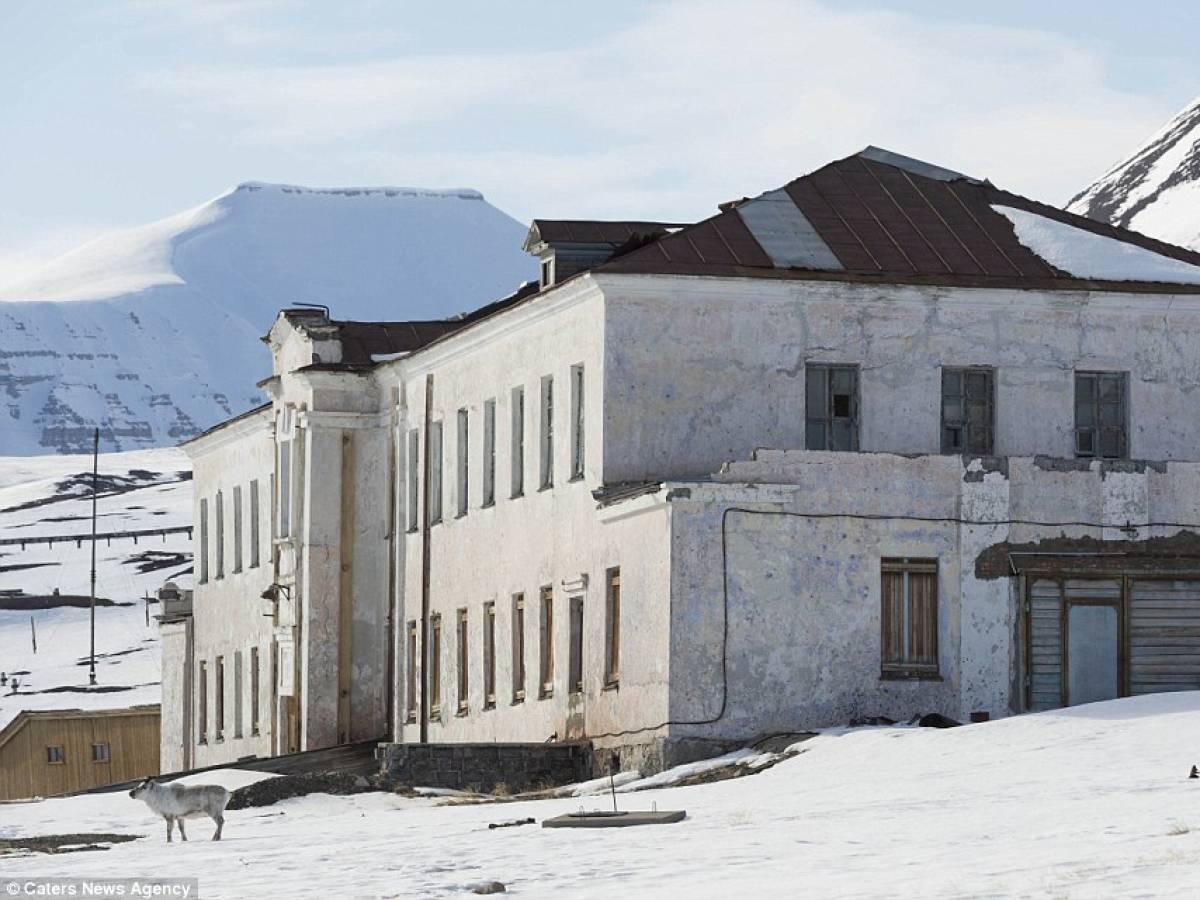 Тайна заброшенного поселка посреди Северного Ледовитого океана заброшенные места,Пирамида,поселок,Северный Ледовитый океан,Шпицберген
