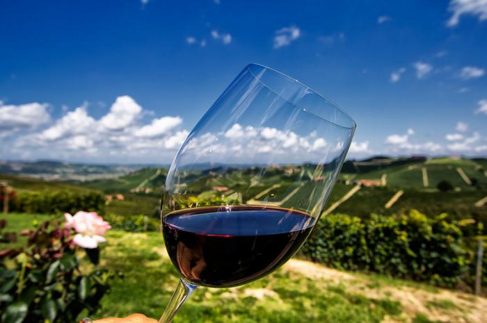 Подборка интересных фактов о виноделие в Италии